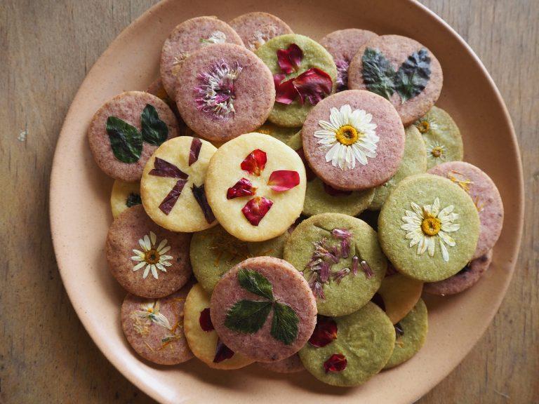 Sušienky a torty TA-KO-DA
